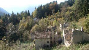The New Wild - Vita nelle terre abbandonate @ Cinema David   Tolmezzo   Friuli-Venezia Giulia   Italia