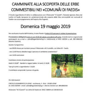 """""""ORTO IN FESTA"""" 17/18/19 maggio a Faedis da Circolo Legambiente Udine @ Centro Studi (dietro la Caserma dei Carabinieri)"""