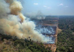 L'Amazzonia brucia, anche per colpa nostra! @ Sala Ajace