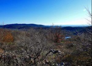 Sul monte Debeli alla scoperta degli Ungulati @ Centro Visite Lago di Pietrarossa